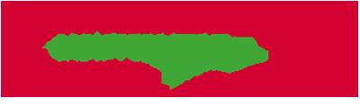 vorlagenfit Logo